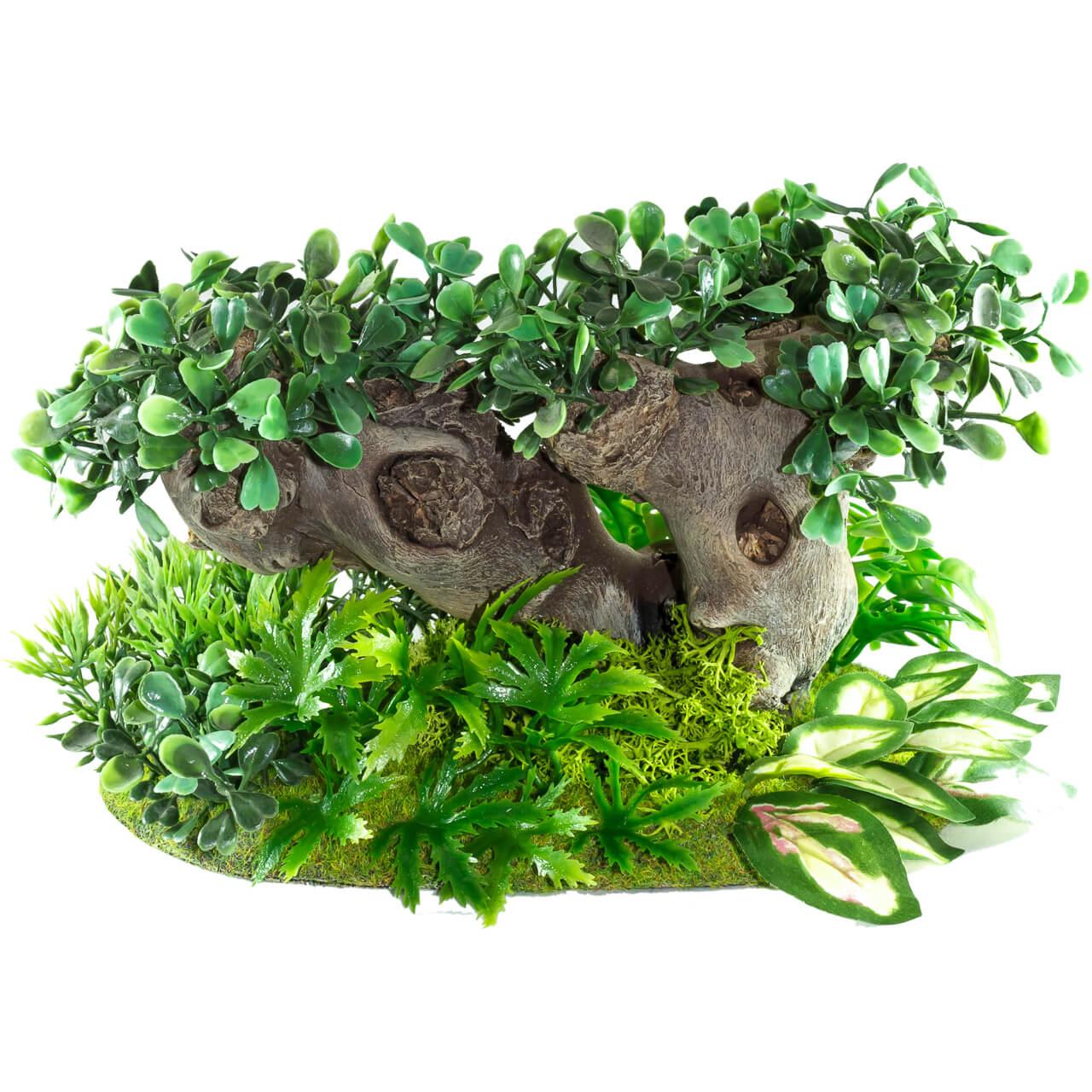 1. Produktabbildung - Dschungelbaum