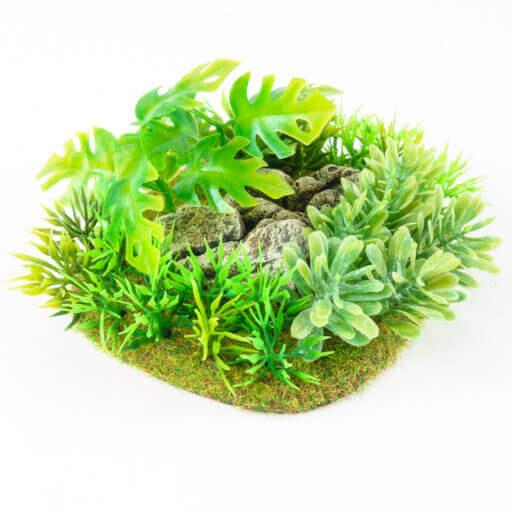 Dschungel Base 1