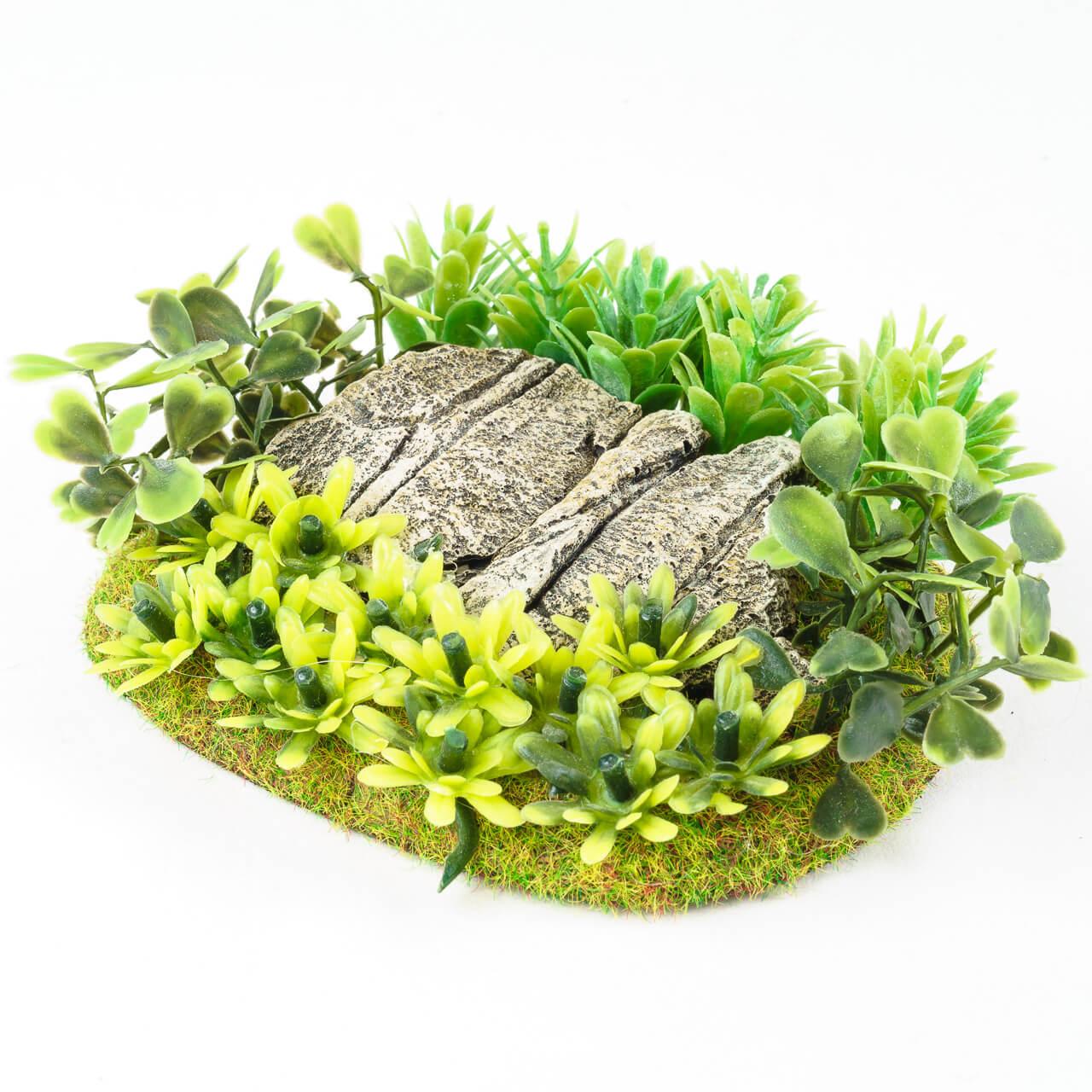 1. Produktabbildung - Dschungel Base 3