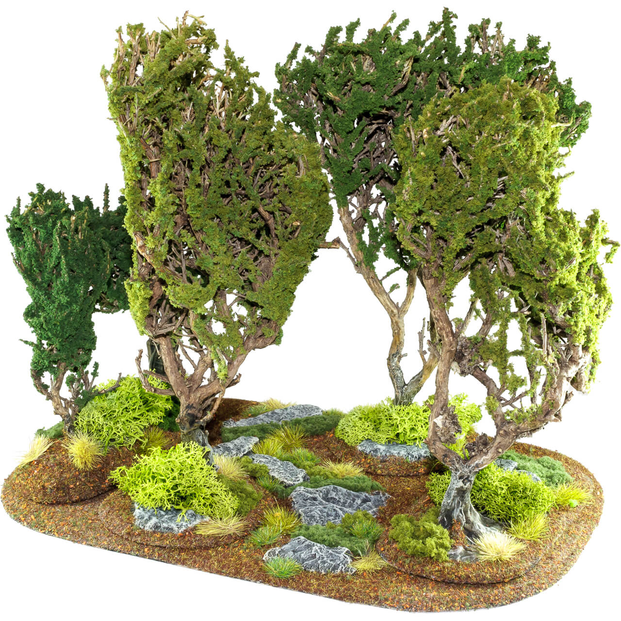 1. Produktabbildung - Wald